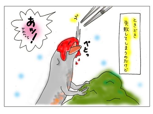 akamushi2.jpg