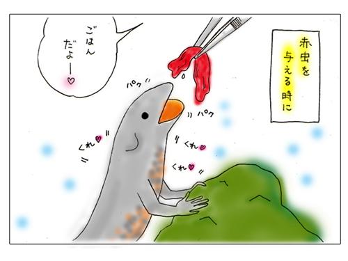 akamushi1.jpg